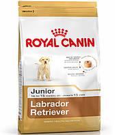 АКЦИЯ!!!Royal Canin LABRADOR RETRIEVER Junior 33 корм для щенков до 15 месяцев 12+2кг в подарок