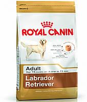 Royal Canin LABRADOR RETRIEVER - корм для лабрадоров ретриверов 12кг.