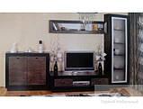 Шкаф для одежды 3Д Корвет Ш-1643 (БМФ) 1660х600х2150мм золотая лоза , фото 2