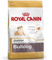 Royal Canin BULLDOG Junior - корм для щенков английского бульдога 12кг.