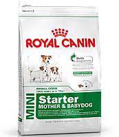 Royal Canin MINI STARTER - первый твердый корм для щенков мини пород 8.5кг.