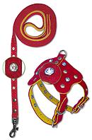 Комплект шлейка и поводок для декоративных пород большая
