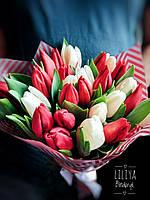 Букет 25 белых и красных тюльпанов