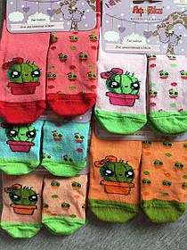 Шкарпетки дитячі демі Африка р 12, різні кольори
