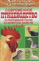 Современное птицеводство на приусадебном участке и в фермерском хозяйстве от А до Я. О. В. Завязкин