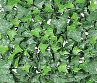 Декоративная зеленая изгородь Engard Молодой вьюнок 100 х 300 см