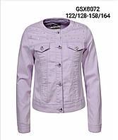 Куртка джинсовая для девочек оптом, Glo-story, 122/128-158/164 см,  № GSX-8072, фото 1