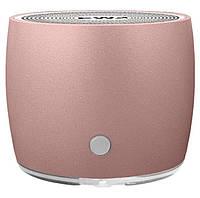 Портативна Bluetooth колонка EWA A103 Ultra Mini Рожеве Золото (SUN4070)