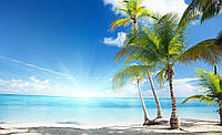 Фотообои флизелиновые 3D природа, море 416х254 см   : Пляж и пальмы (735.20046)
