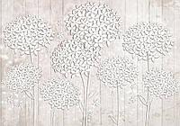 Фотообои флизелиновые 416х254 см  : Белые цветы на фоне досок (3502.20822)