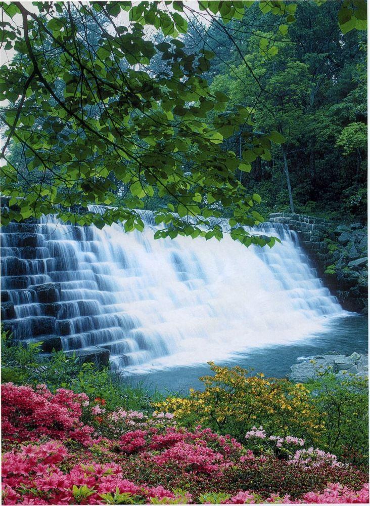 Фотошпалери Водна феєрія 194*134 (8лист) (Шпалери)