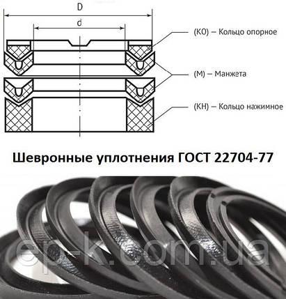 Манжета шевронна ДО 70х95 ГОСТ 22704-77, фото 2
