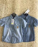 Джинсовая рубашка на мальчика оптом, S&D, 4-12 лет,  № KK-587