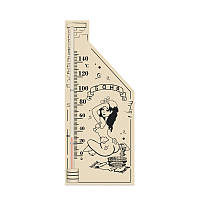 Термометр для бани исп.5 (260*110), Saunapro, фото 1