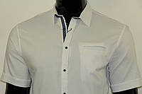 Рубашка мужская 2590