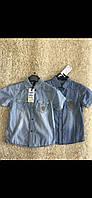 Котонові сорочки для хлопчиків S&D 4-12 років