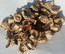 Веселка гриб (сухий гриб), 50г.