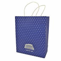 Подарунковий паперовий пакет, оригінальна упаковка для подарунка «Горошек»