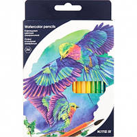 Карандаши цветные акварельные KITE Птицы, 36 цветов (K18-1052)