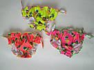 Плавочки для купания на девочку яркие малиновые ананасики, фото 3