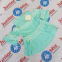 Детские летние блузки для девочек оптом  Kids Star, фото 1