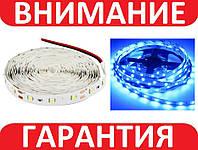 Светодиодная лента smd 2835 60 диод/м синие свечение