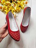 Женские летние кожаные балетки с перфорацией (красные), фото 5