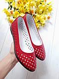 Женские летние кожаные балетки с перфорацией (красные), фото 4