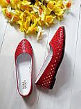 Женские летние кожаные балетки с перфорацией (красные), фото 2