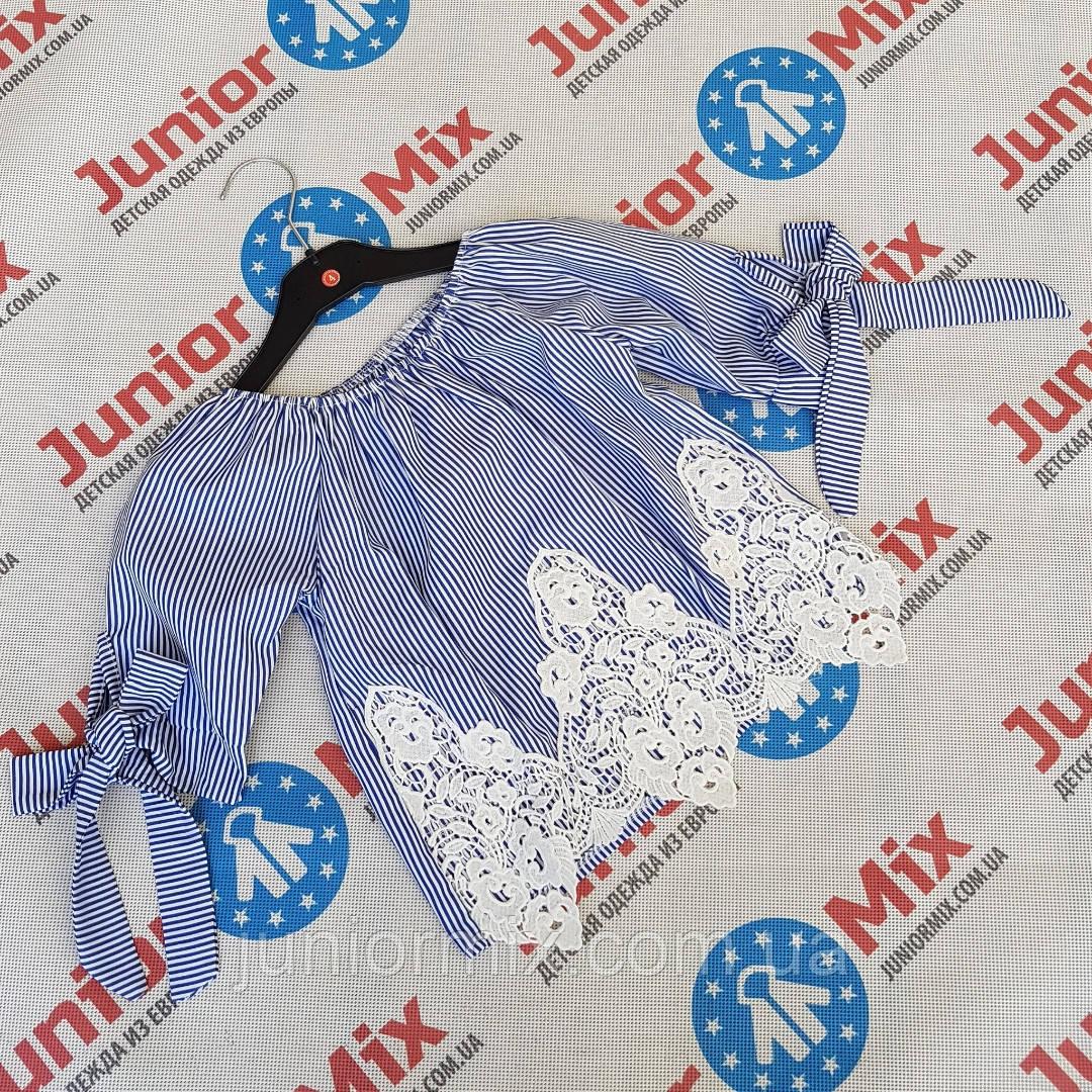 Детские х/б блузки для девочек оптом  B.B.W