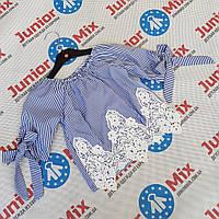 Детские х/б блузки для девочек оптом  B.B.W, фото 1