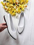 Женские летние кожаные балетки с перфорацией (белые), фото 3