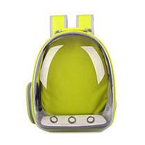 Собака Кот Прозрачная космическая капсула Breathable Shoulder Сумка Pet вне путешествий Портативный переносной рюкзак - 1TopShop, фото 3