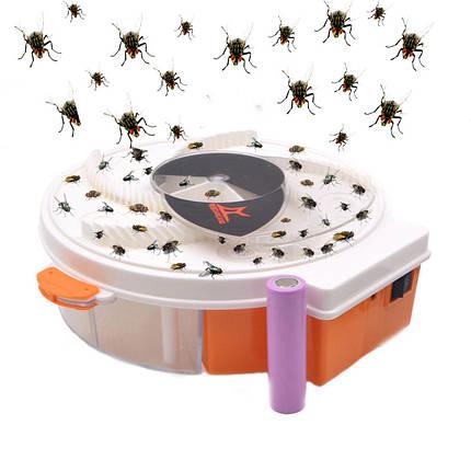 4WLEDЭлектрическиймухобойникUSBМоскито-убийца Лампа Убийца насекомых Лампа Для Кемпинг Борьба с вредителями - 1TopShop, фото 2