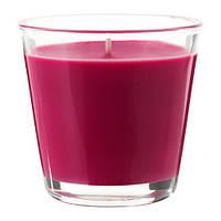 OMTALAD   Ароматическая свеча в стакане