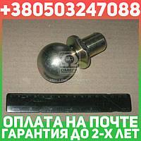 ⭐⭐⭐⭐⭐ Головка шаровая гидроцилиндра (производство  Россия)  5511-8603147