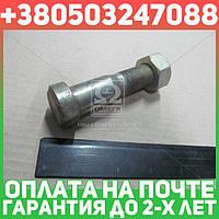 ⭐⭐⭐⭐⭐ Болт ступицы колеса переднего с гайкой (производство  Беларусь)  5336-3104050/250565