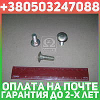 ⭐⭐⭐⭐⭐ Болт ГАЗ М10х30 бортов задних ГАЗ грузовой круглый голый и квадратный подголовник (бренд  ГАЗ)  210406-П29