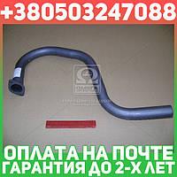 ⭐⭐⭐⭐⭐ Труба выхлопная ГАЗ 3102 (Гусь-короткий) (пр-во Ижора)