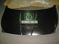 Капот Hyundai Accent (Хюндай Акцент) 10- (пр-во TEMPEST)
