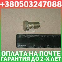 ⭐⭐⭐⭐⭐ Болт ГАЗ М12х20 кронштейна  валика акселератора 66,3308 (покупн. ГАЗ)