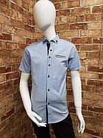 Рубашки подростковые (С 6-11 лет) производство Турции
