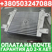 ⭐⭐⭐⭐⭐ Охладитель наддувочного воздуха ГАЗ, ПАЗ Д245.7.9 (производство  Беларусь)  250-1172010, фото 1