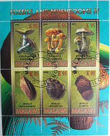 """Малави Блок """"Грибы"""" 2010 г."""