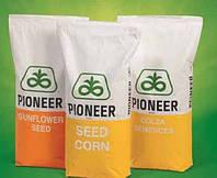 Семена подсолнечника ПР64 Ф66 (RM 43), (Pioneer)
