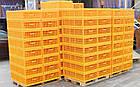 Ящик для перевозки птиц Mini Piedmont 770х570х290 мм двухдверный, фото 6