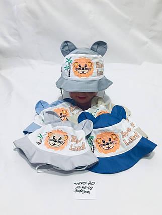 Детская панамка для мальчика Zoo land,р.46-48,коттон, фото 2