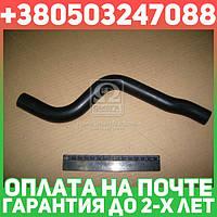 ⭐⭐⭐⭐⭐ Шланг отопителя ВАЗ отводящий (производство  БРТ)  2123-8101204Р