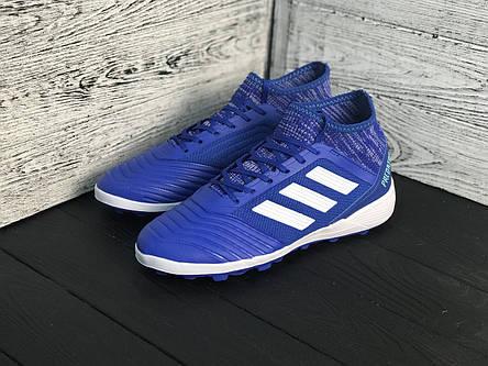 Сороконожки футбольные Adidas Predator с носком реплика Синие, фото 2