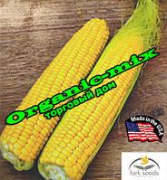 Кукуруза сахарная Хаммер F1 / Hummer F1 (США), 2500 семян, ТМ Lark Seeds